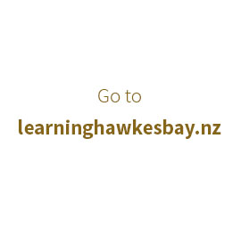 Learning Hawkes Bay